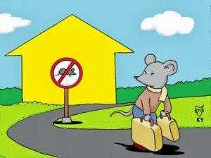 . cara mengusir tikus.