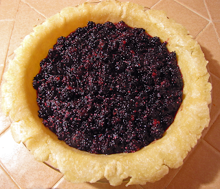 Berry Pie Filled without Top Crust