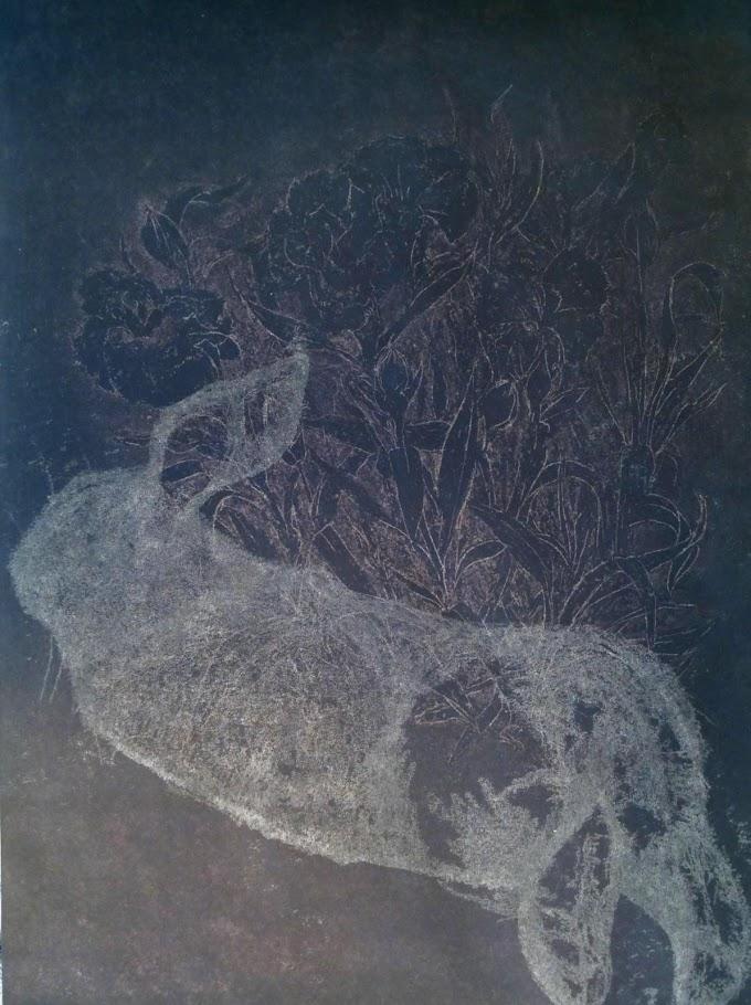 Die Nacht der Tiere Cover