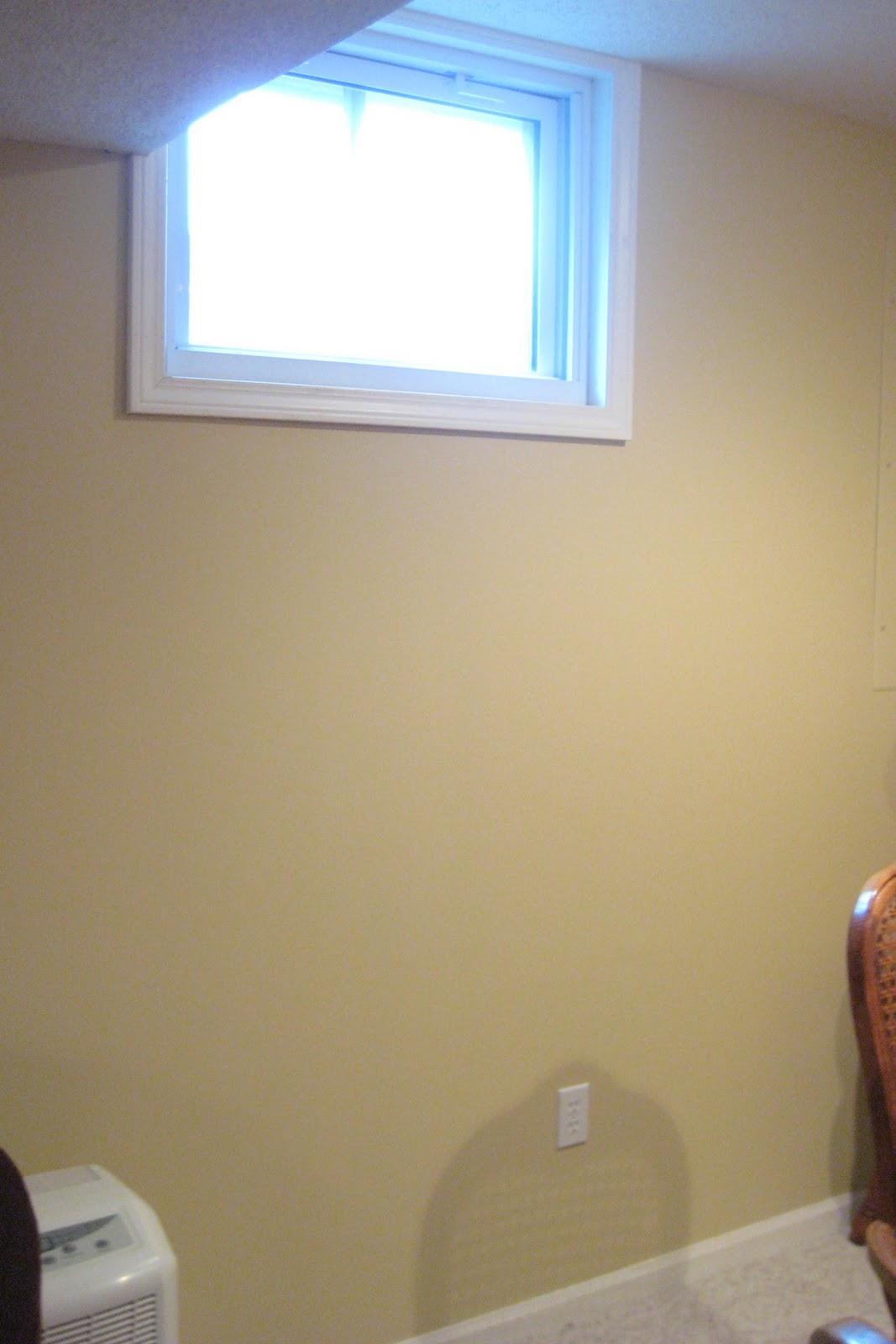 Tallgrass design basement window solution for Daylight basement windows