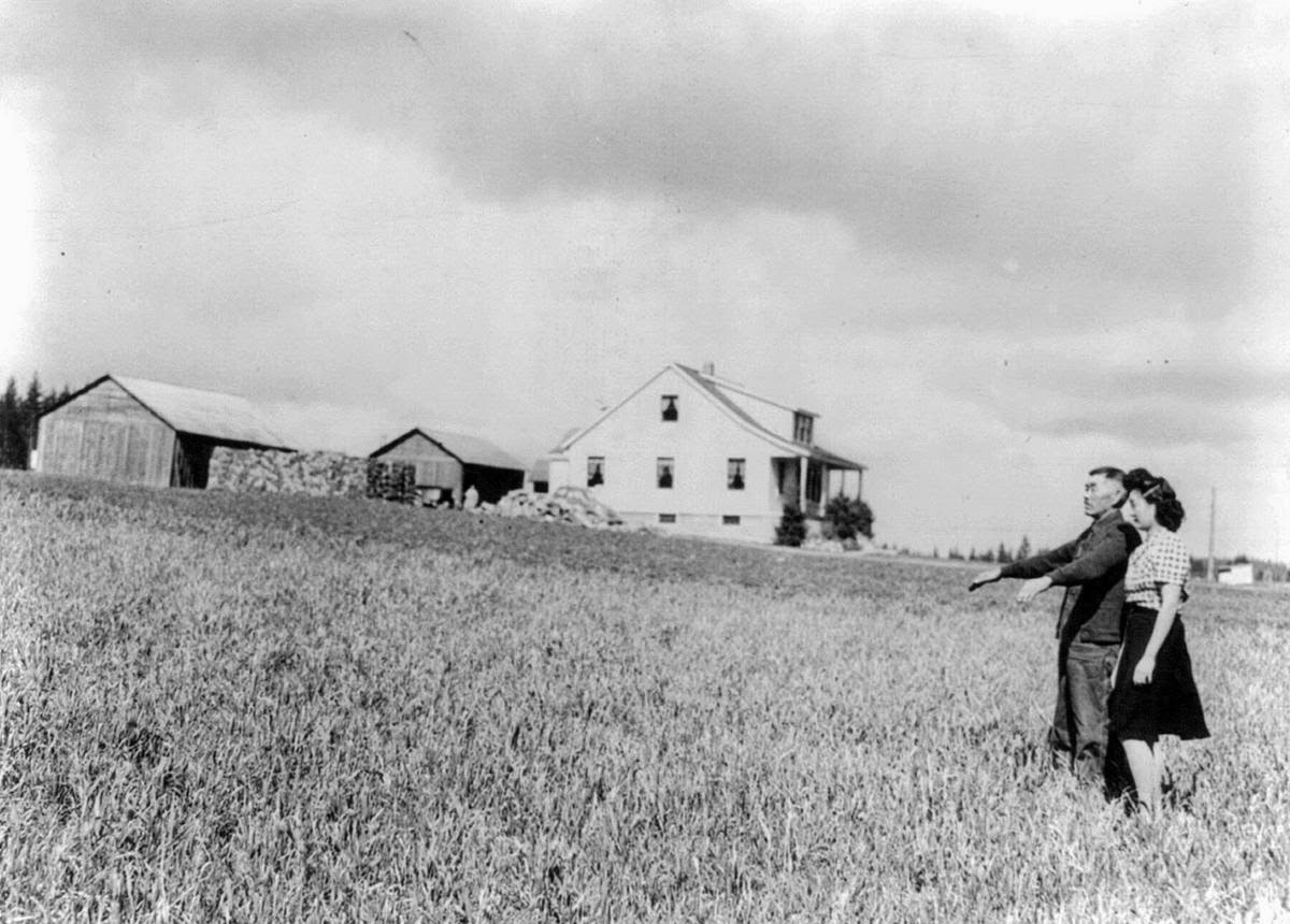 an analysis of the world war ii on japanese americans Confinement and ethnicity: an overview of world war ii japanese american  relocation sites  minidoka: an analysis of changing patterns of social  interaction.