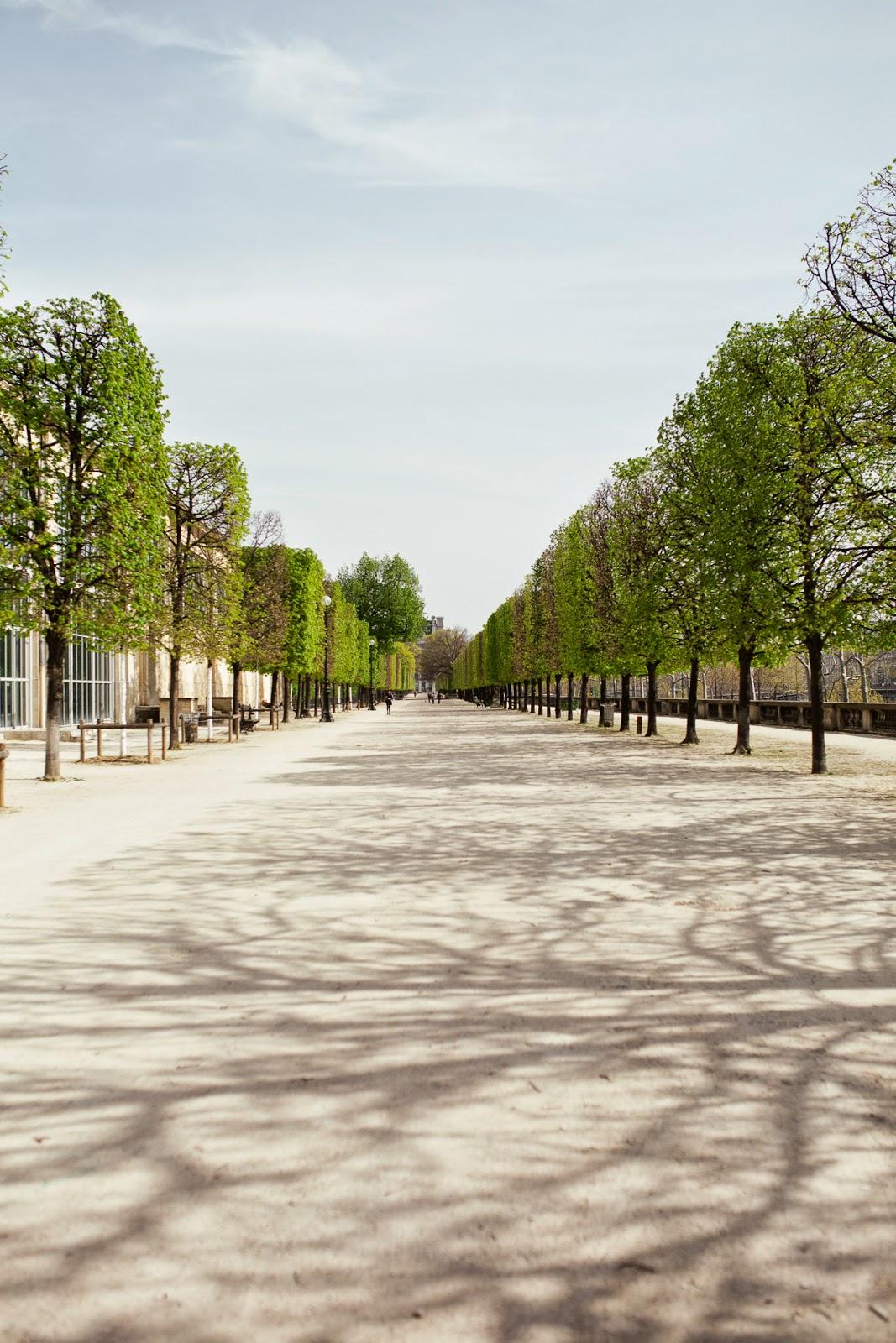 Le Jardin des Plantes / blog.jchongstudio.com