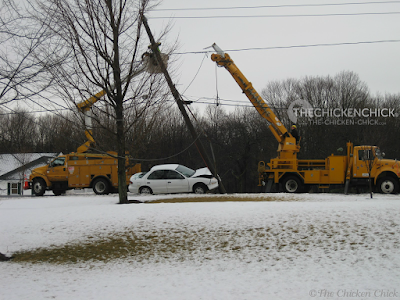 Crisis #2: February 2012. Driver on his way to a job interview crashes his car into the utility pole in front of our house, knocking out power for hours. (The driver was fine, although mighty late to his interview.) The remedy was to bring the bator to my neighbor's house as they had a generator.