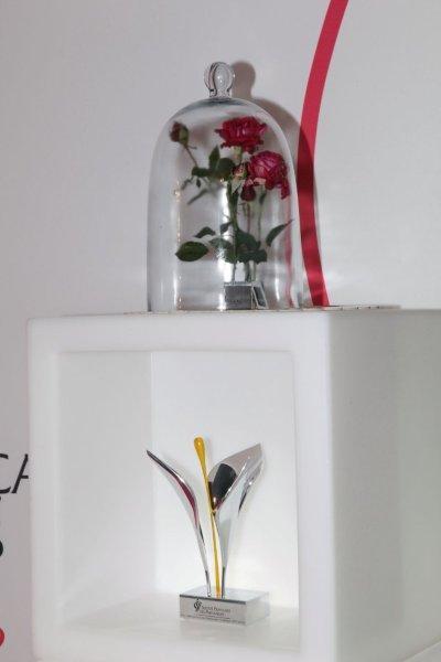 international luxury consulting patrick saint yves pr sident de la soci t fran aise des. Black Bedroom Furniture Sets. Home Design Ideas