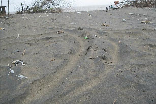 Black colored sand of Dumas Beach