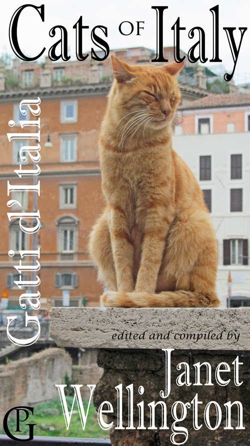 feral cats essay Is it more humane to trap and kill the district's feral cats, or to trap, neuter and free them to fend for themselves.