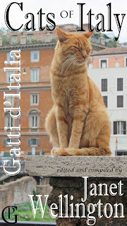 Cats Of Italy Gatti d'Italia