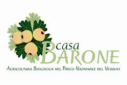 Casa Barone