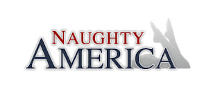naughtyamerica logo