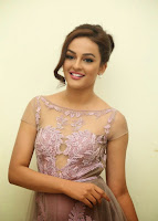 Seerat Kapoor in Transparent Anarkali Dress at Tiger Movie Audio Launch