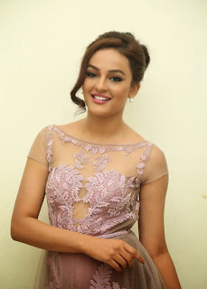 Seerat Kapoor Stills at Tiger Movie Audio Launch 1.jpg