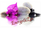 ASSOCIATION ENERGY ZEN MEAUX