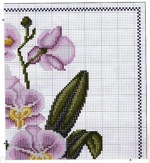 e coloridas Orquídeas, para alegrar e decorar sua casa. Um maravilhoso fim de semana, com a paz de Jesus e o perfume das mais belas flores para você!
