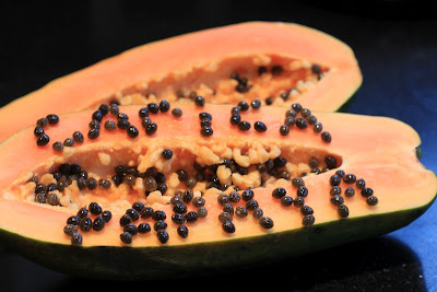 Carica papaya - Caribbean Red - Binomial Name