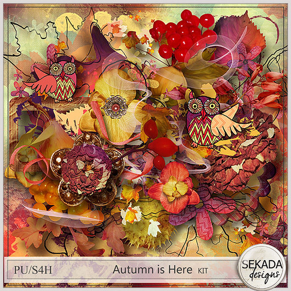 http://www.digitalscrapbookingstudio.com/sekada-designs/