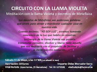 Circuito Llama Violeta