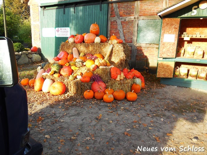 12 von 12 (Oktober 2014)- neuesvomschloss.blogspot.de