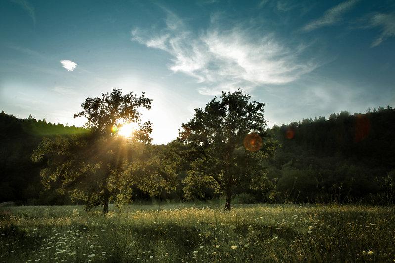 Journal d 39 une cr atrice de mode le soleil bronzer sans cr me solaire - Bronzer sans coup de soleil ...