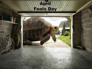 April Fool Wallpaper