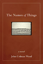 An ethnographic novel