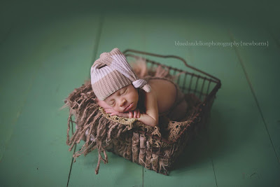 Blue Dandelion newborn photography