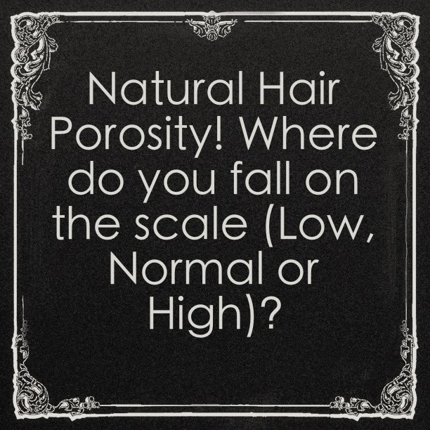 Natural Hair Porosity