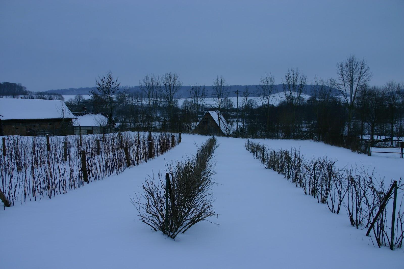 Verger des prouelles r veil sous la neige for Foyer colette yver rouen