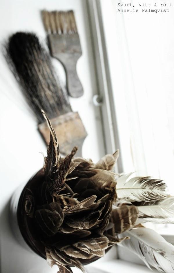 fjädrar, gamla penslar, foto, fotografi,