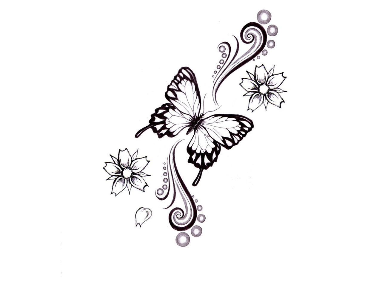 Butterfly tattoo sketches tukang kritik - Tatouage de papillon ...