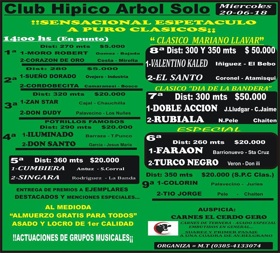 20-06-18-HIP. ARBOL SOLO-PROG.
