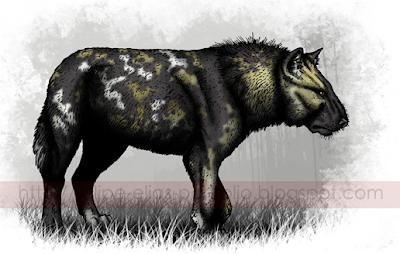 canidae fosiles de Argentina Protocyon