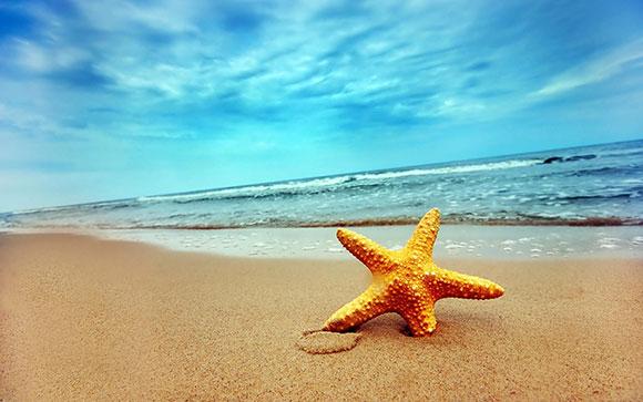 نجم البحر , خلفيات سبونج بوب