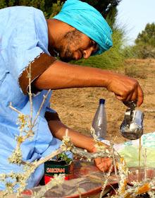 L'heure du thé dans les dunes
