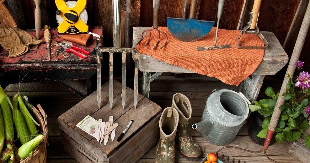 Best gardening blog top gardening tips landscaping for Best gardening tools 2016