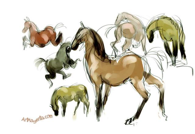 Horses by ArtMagenta.com