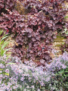 vine on old wall looks great, Garden design London and Sussex