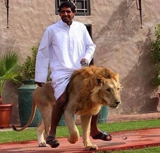 Beginilah Kehidupan Mewah Jutawan di Dubai