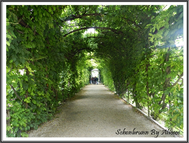 palat-schonbrunn-gradini-austria-viena