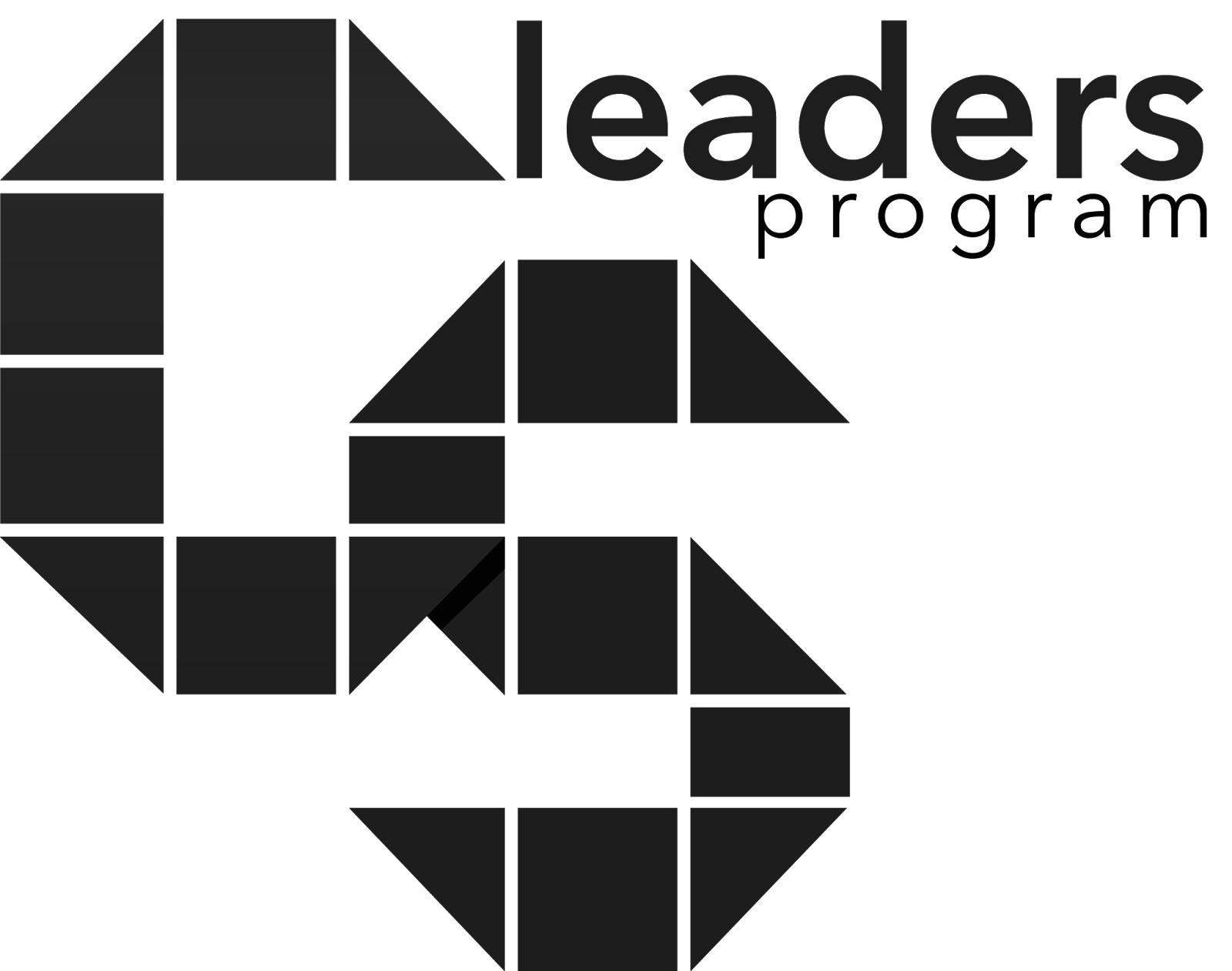 CS Leader Program