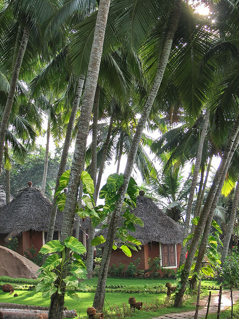 Resort in Kovalam