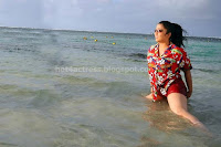 Charmi, kaur, hot, thighs, photos, at, beach