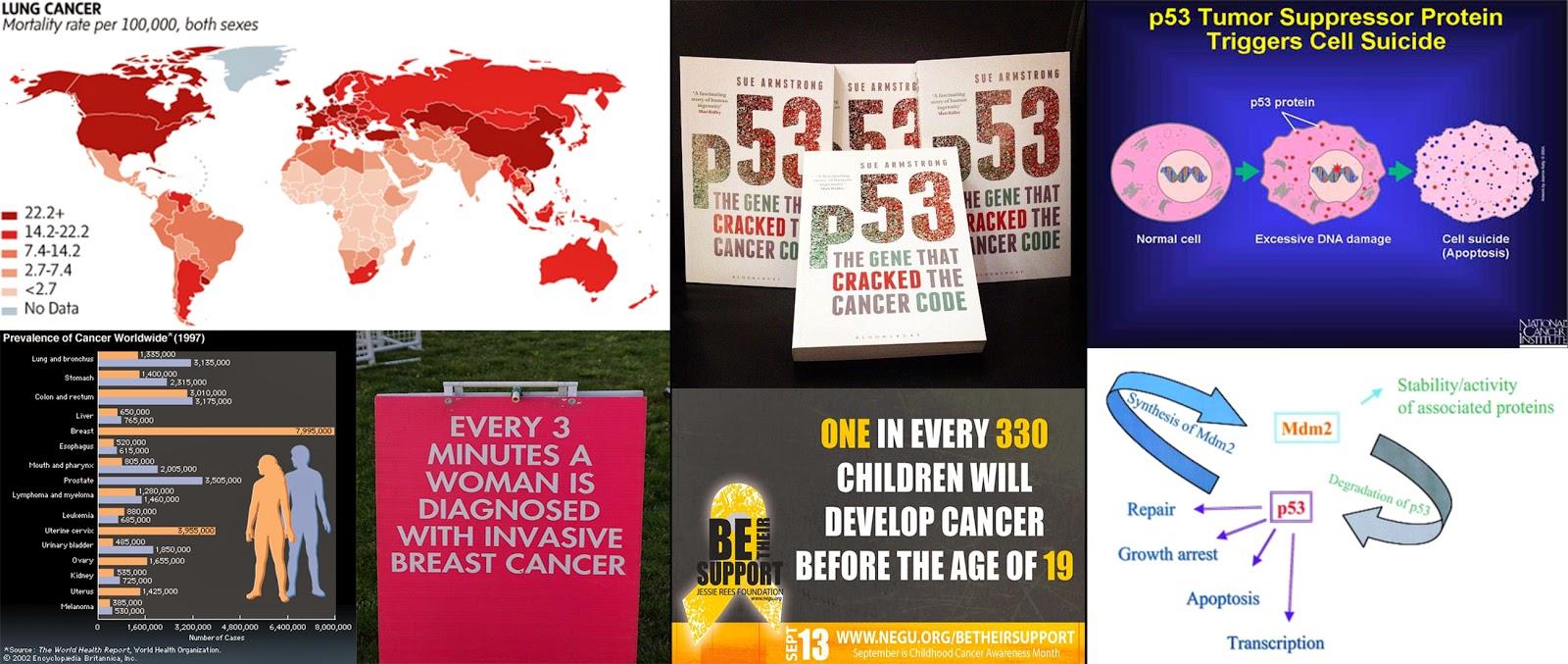 Καρκίνος, και πράγματα που δεν θα σας πουν και δεν γνωρίζετε.  9