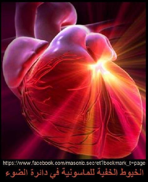 أصلحوا قلوبكم..تنصلح كل احوالكم... القلب المسيطر بين العلم والايمان؟