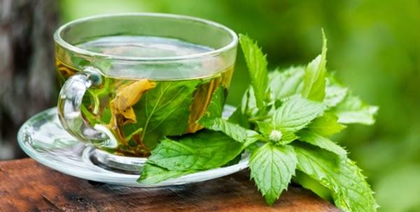 3 Obat Herbal Untuk Hadapi Gejala Usus Buntu