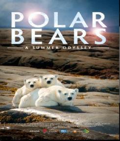 Gấu Bắc Cực - Polar Bears: A Summer Odyssey