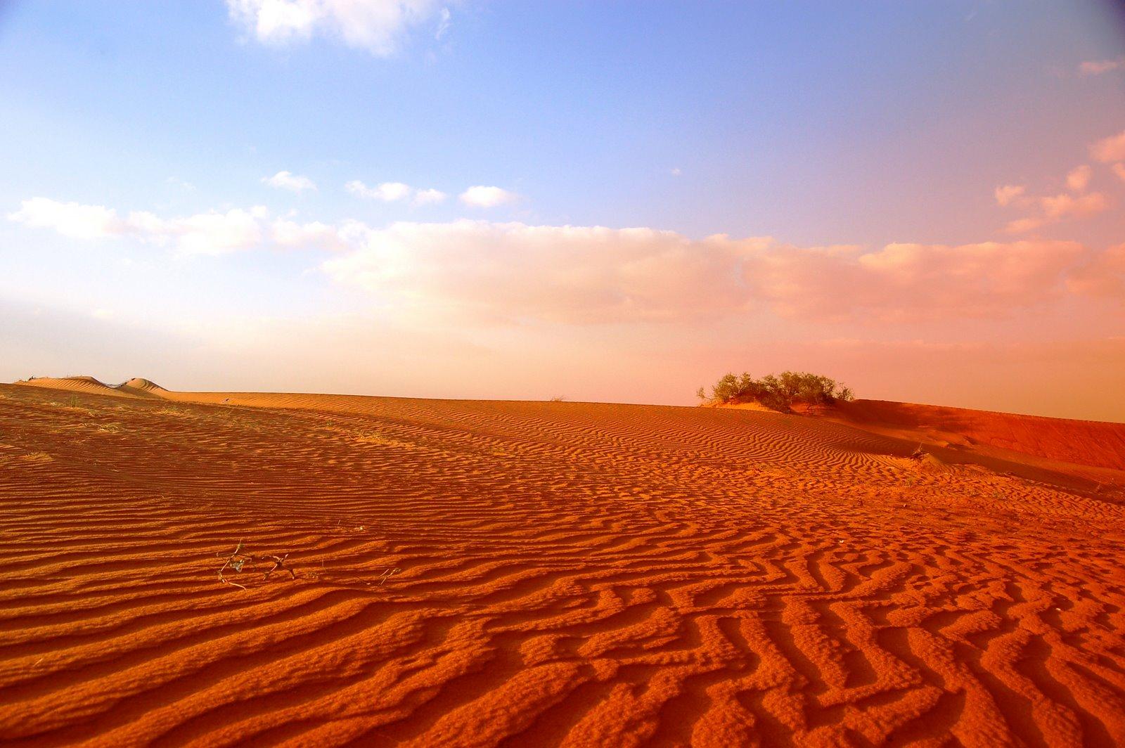 Stormy desert google search dogfight props pinterest for Desert landscape