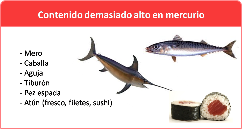 EVITA PESCADOS CON ELEVADO CONTENIDO DE MERCURIO Y/O CRIADOS CON PIENSOS