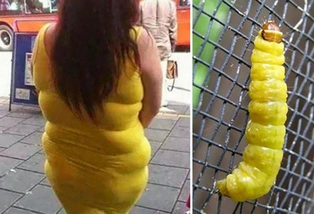 Yellow Dress And Caterpillar