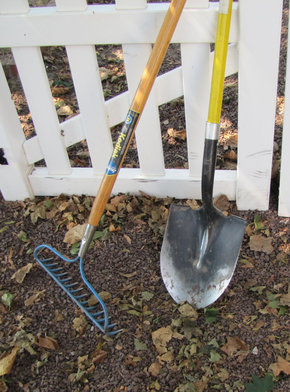 Views from the Garden Garden tools for the beginning gardener