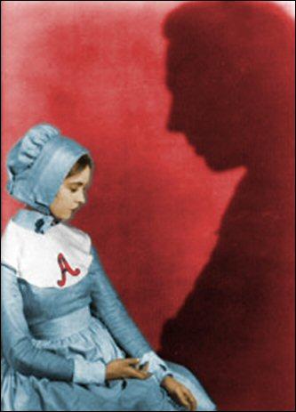 el gato literario: the scarlet letter.